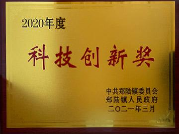 2020年度科技创新奖(铜牌)